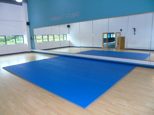 Promat PVC Tatami Roll Out Mats