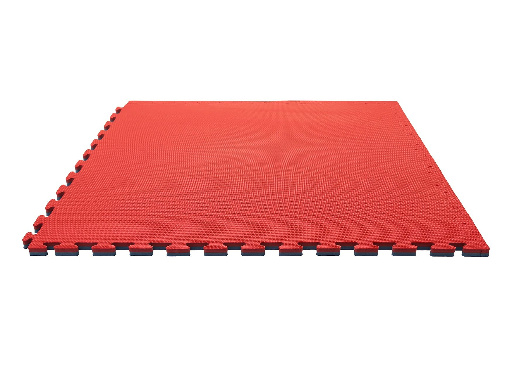 Blue And Red 20mm Jigsaw Mat Martial Arts Matting